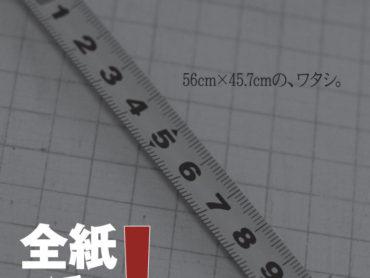 【グループ展】OYOYO写真部写真展vol.2『全紙でドン!』6月20日(土)〜28日(日)